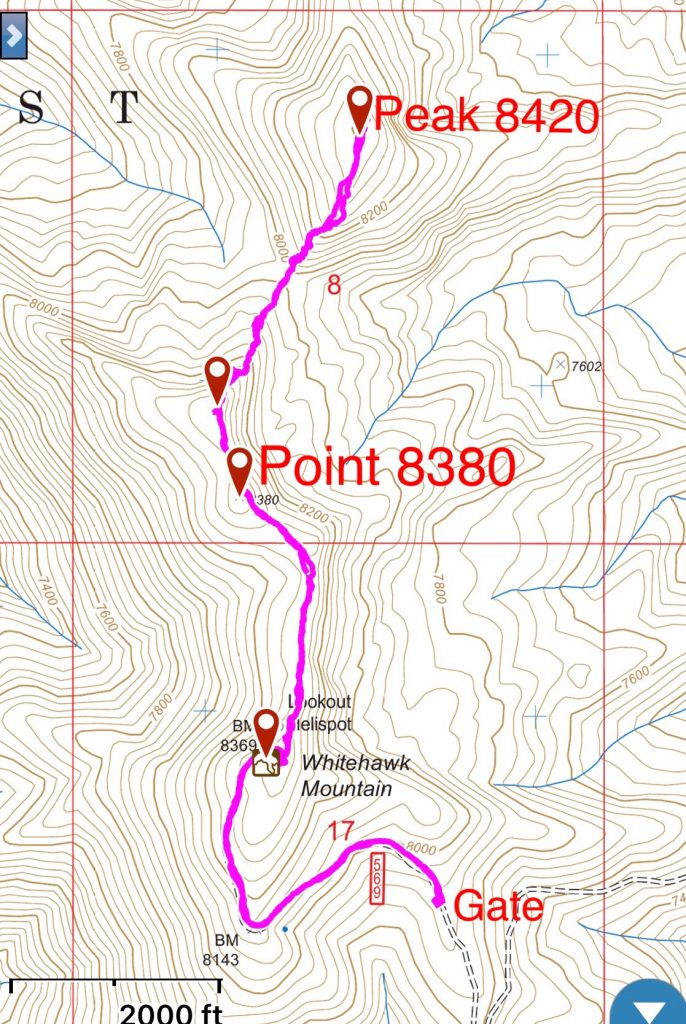 My GPS track. It is 0.9 miles with 460 feet of gain from the gate to the lookout and another 0.6 miles to the high point. Round trip from the gate to Peak 8420 clocked in at 4.8 miles with 1,300 feet of gain.