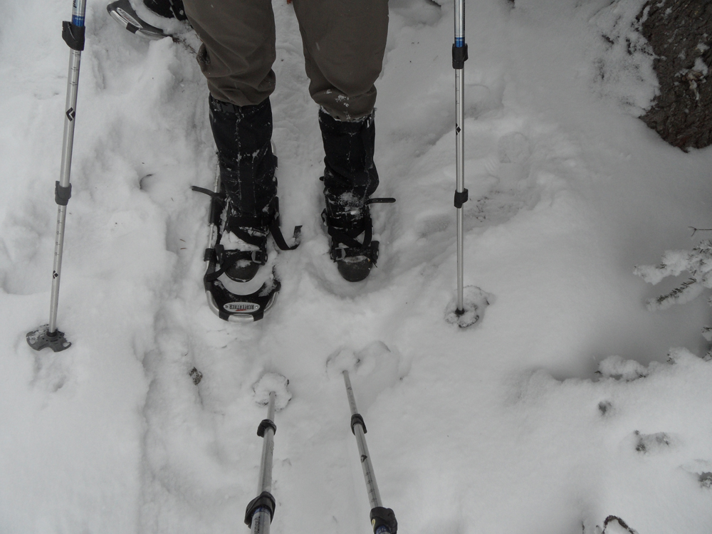 A missing snowshoe can turn into a serious problem.