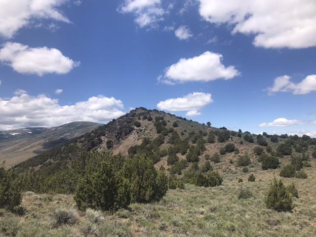 Peak 6562 viewed from the east.