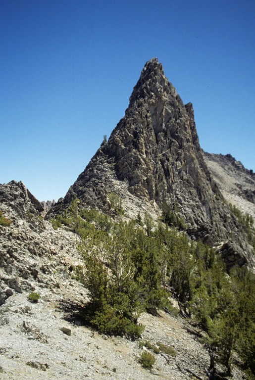 Fishook Spire from north.