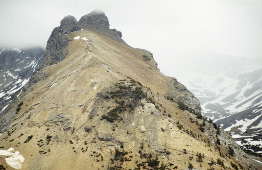 Handwerk Peak viewed from Pioneer Cabin.