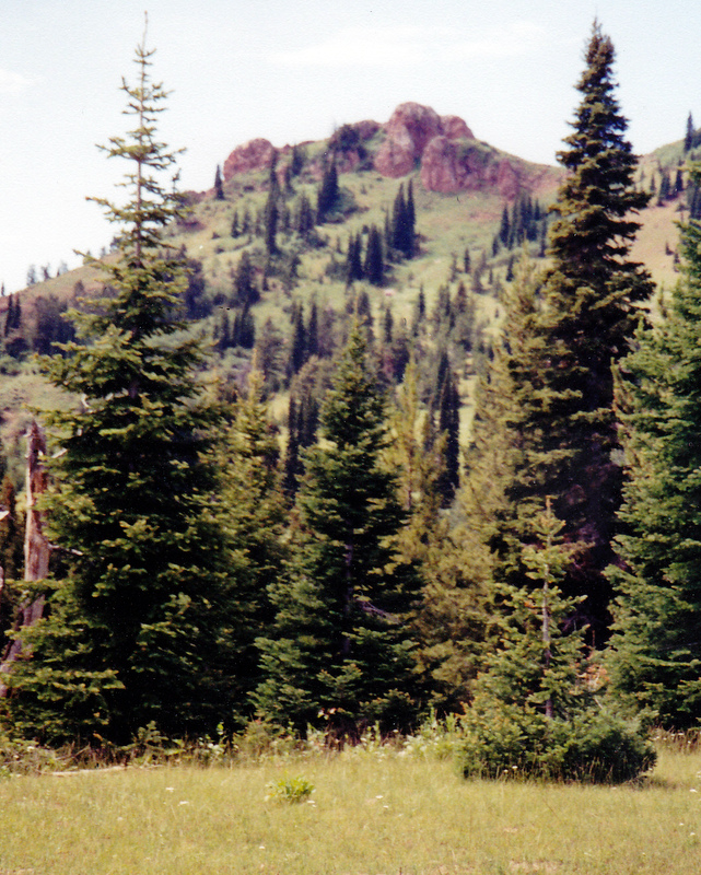 Red Butte viewed from the south and Thousand Springs Valley. Rick Baugher Photo 7-12-2001