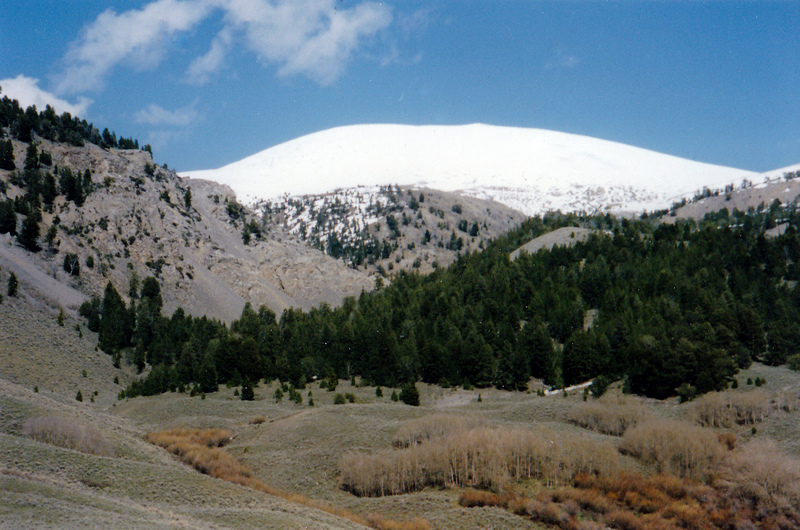 Mount Carpenter viewed from {Poison Creek. Rick Baugher Photo