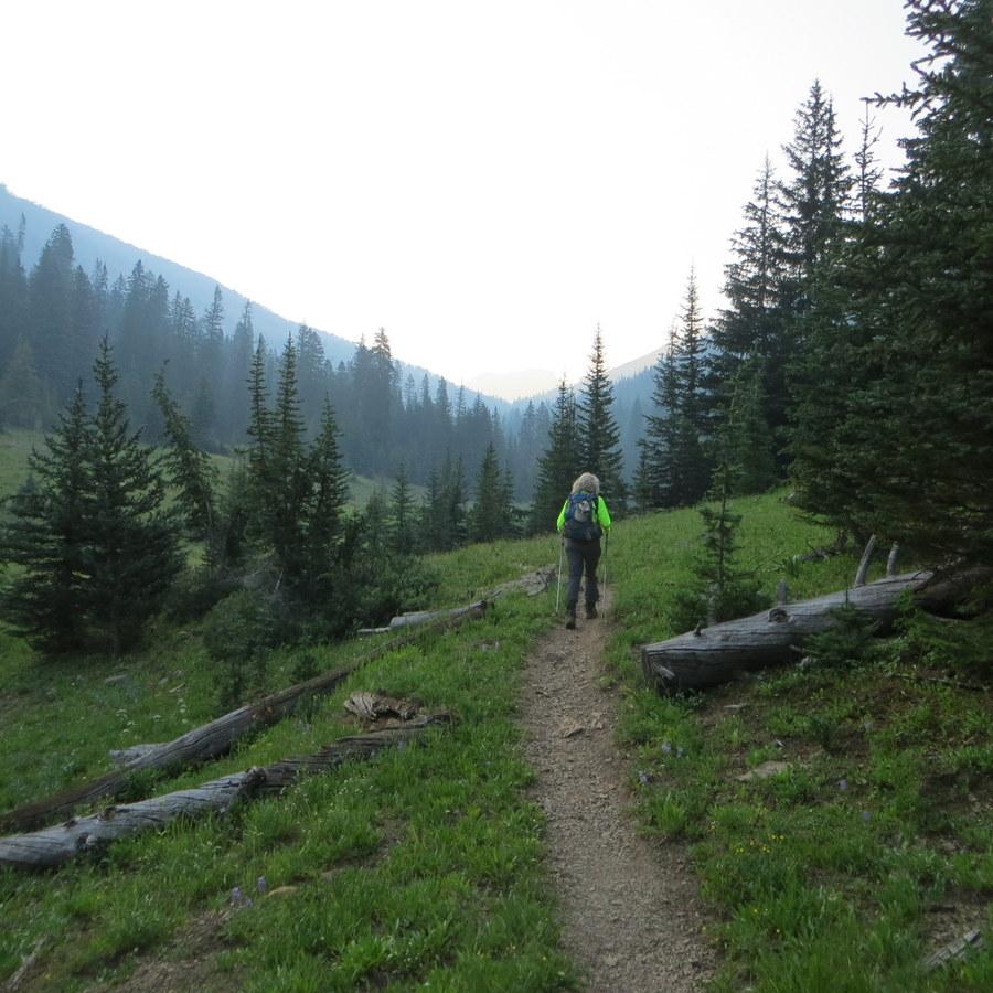 Well traveled trail. Steve Mandella photo.
