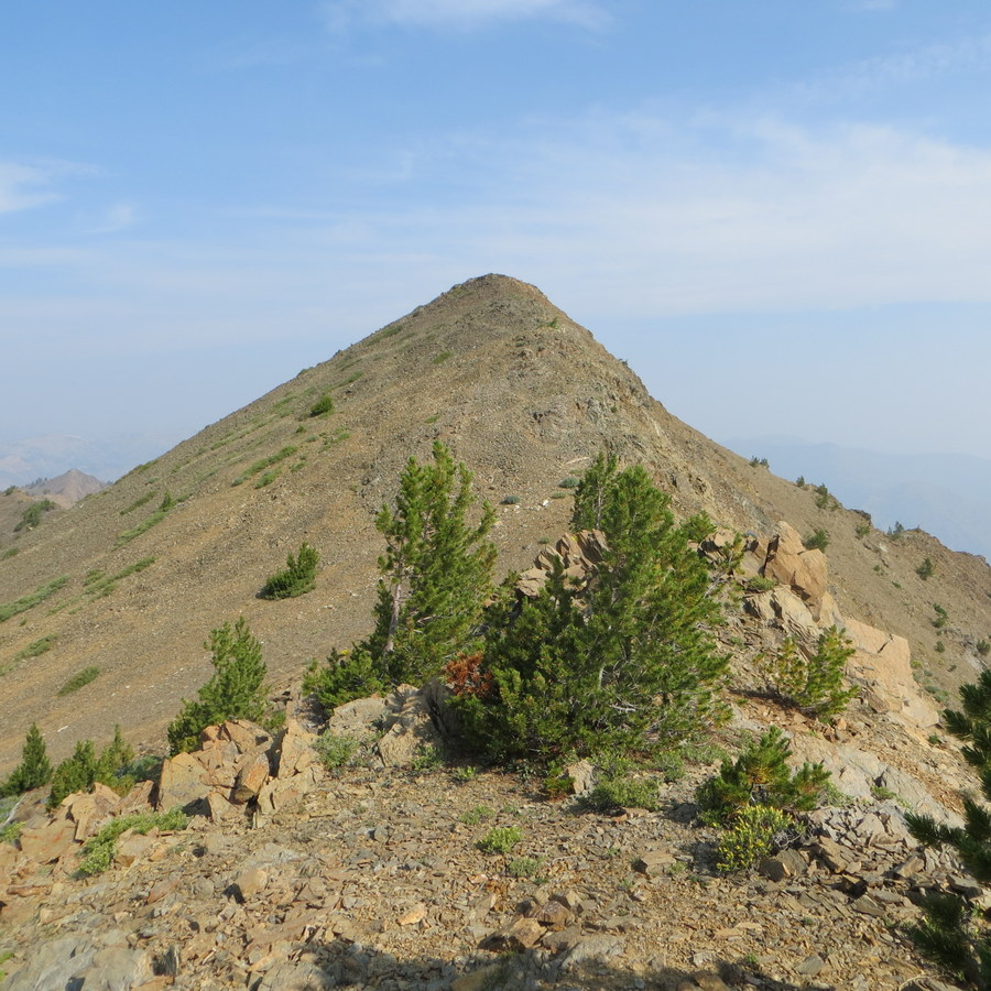 Summit of Summit Creek Peak. Steve Mandella photo.