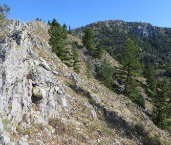 From the ridge Stouts' summit block comes into view. Photo, Steve Mandella