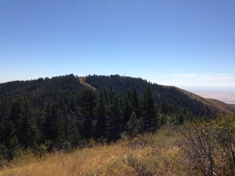 Shaw Mountain viewed from its lower summit.