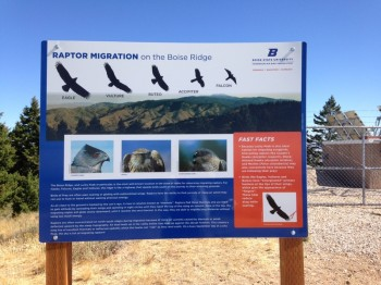 This sign explains why the BSU camp is present. There were bird watchers all around the summit and several trails have been cut through the brush that lead to viewing areas.