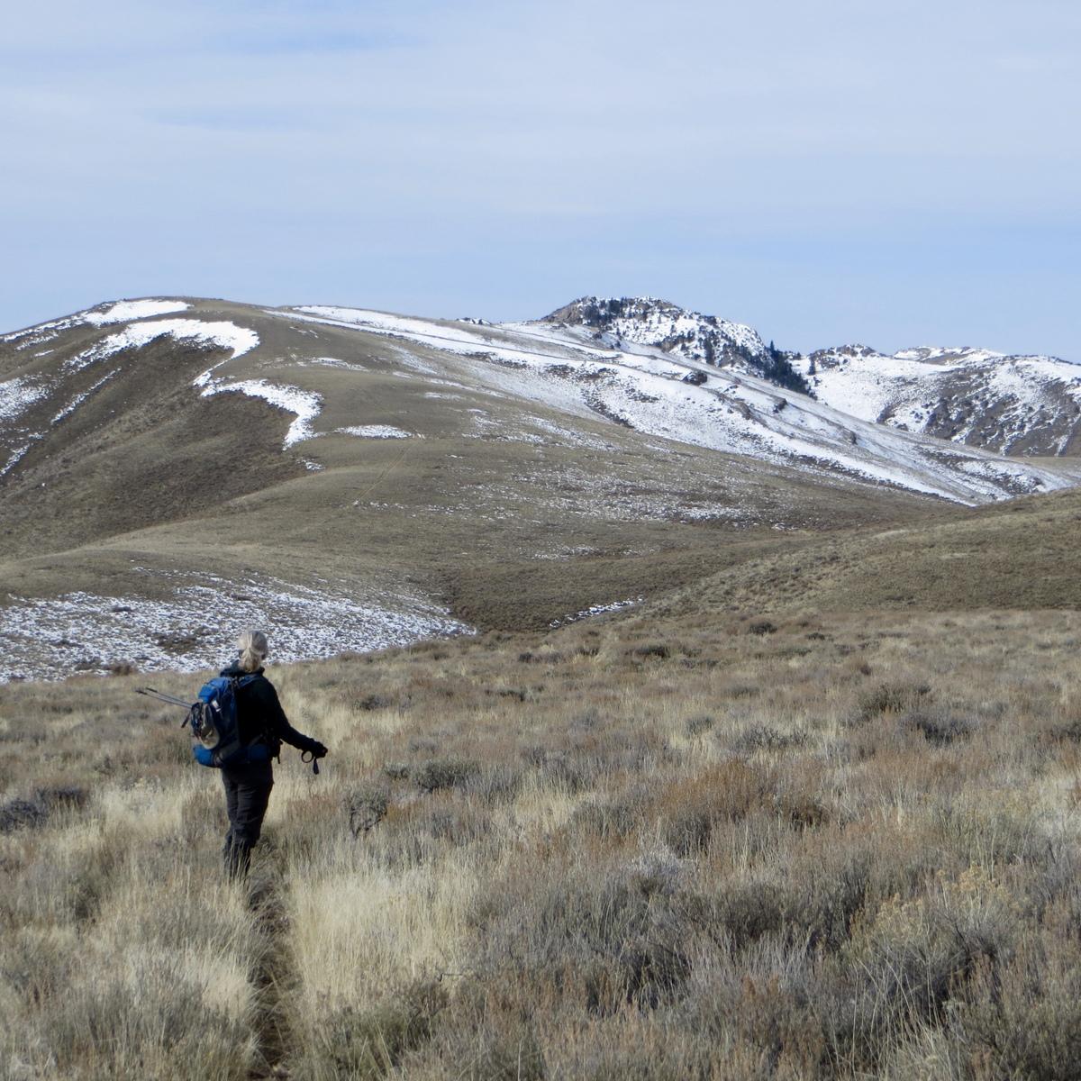 Looking at Peak 6990. Steve Mandella photo.