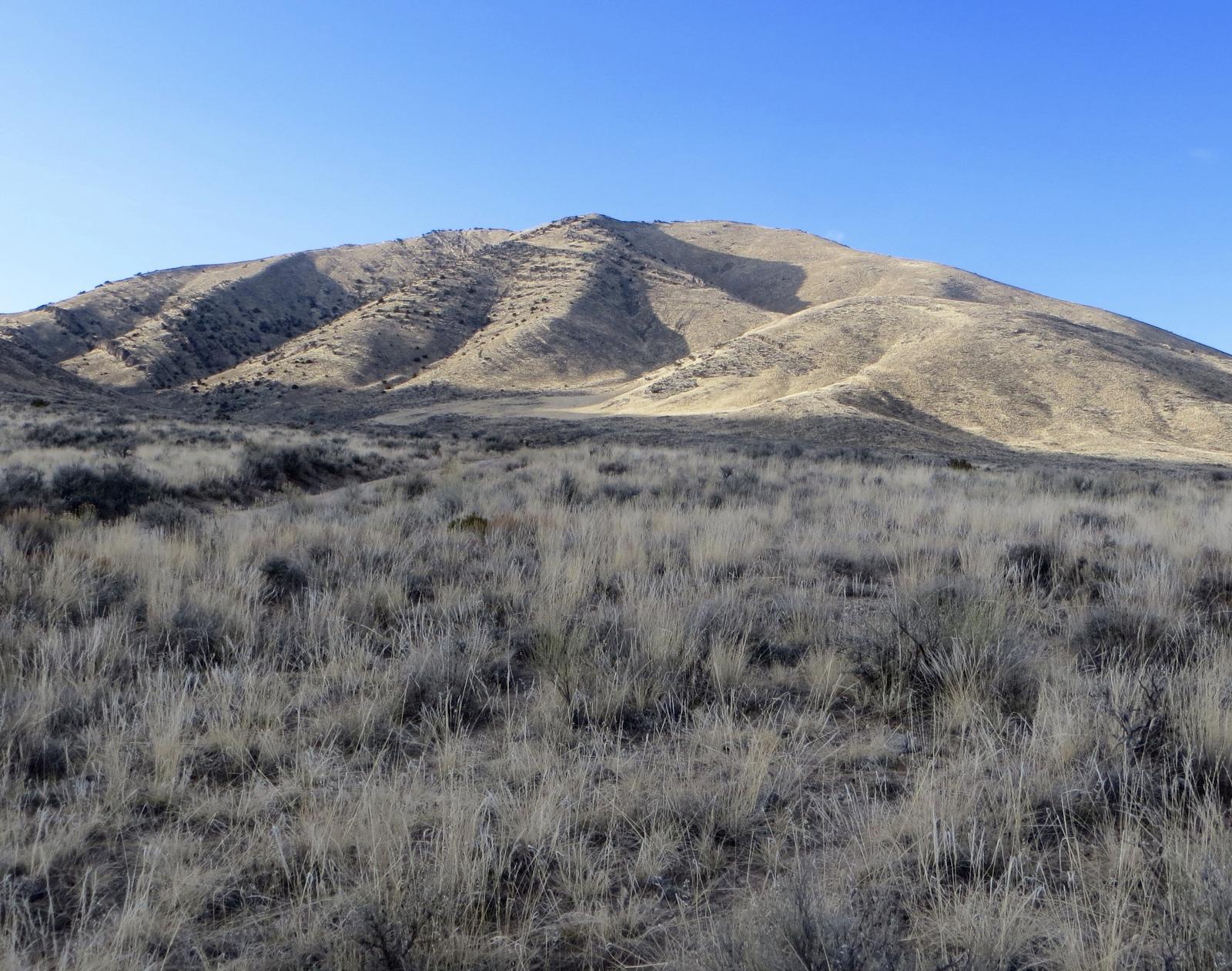 Peak 7194 (left back) and Peak 6990 (front center). Steve Mandella photo.