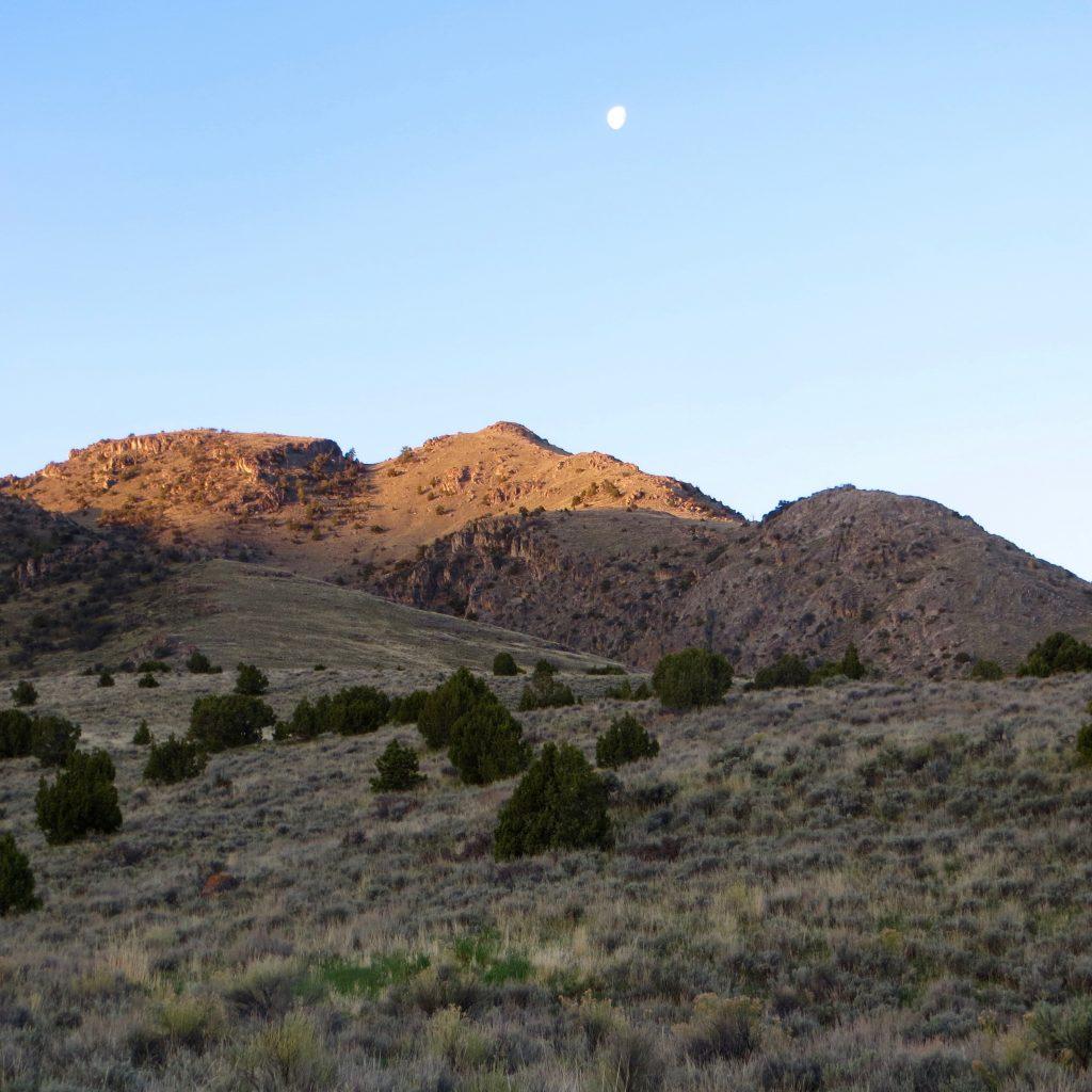 Peak 7333 from camp. Steve Mandella photo.