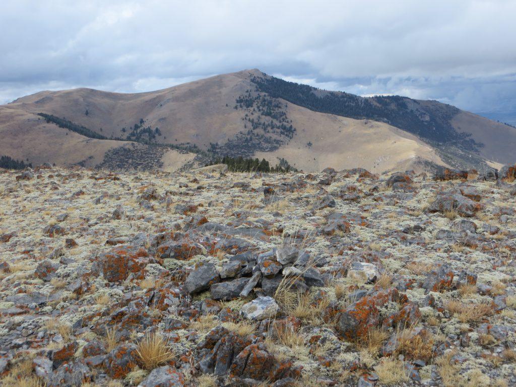 Summit of Peak 8726. Photo Steve Mandella