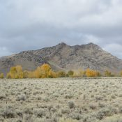 North Chilly Butte from Trail Creek Road - Steve Mandella photo.