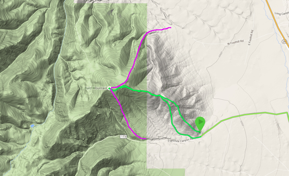 Larry's GPS track in green. The magenta are other possible lines of ascent suggested by Larry