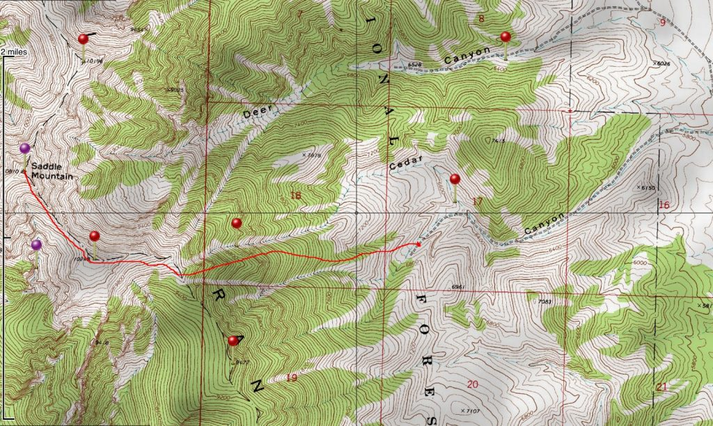 Saddle Mountain route up Cedar Canyon. Larry Prescott Map