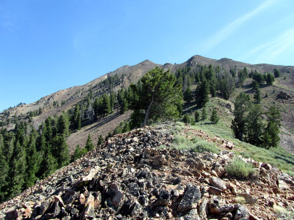 Argosy Peak. George Reinier Photo