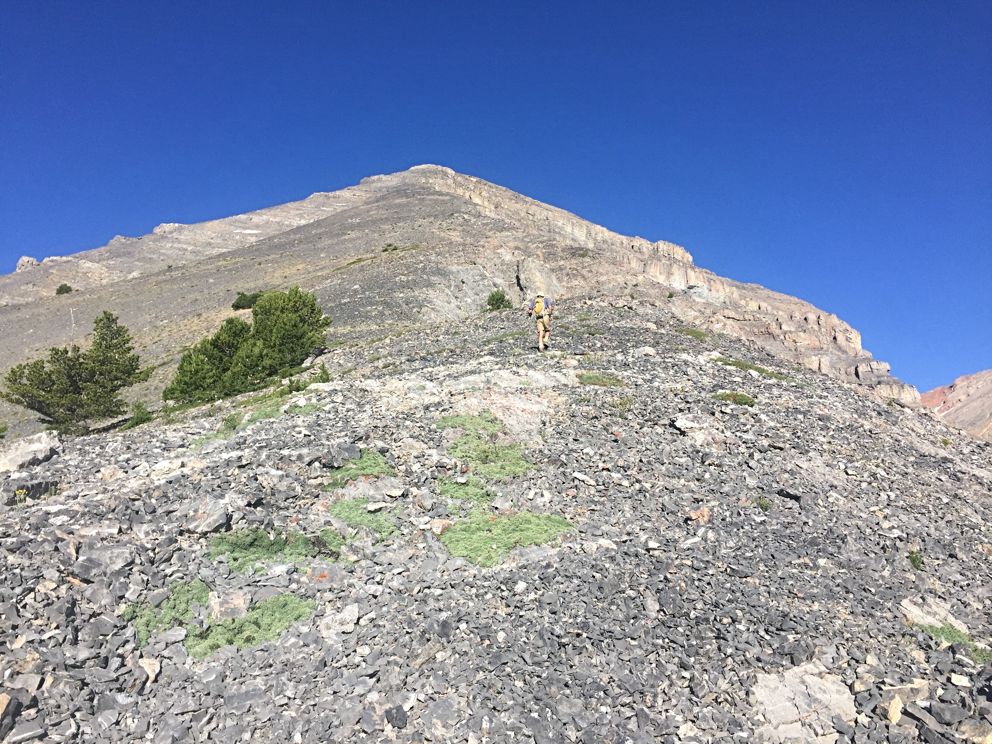 Looking up the east ridge from just above treeline.