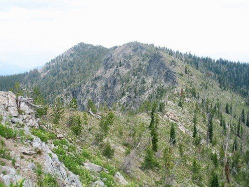 Nearing the supmmit of Three Prong Mountain. Mike Hays Photo