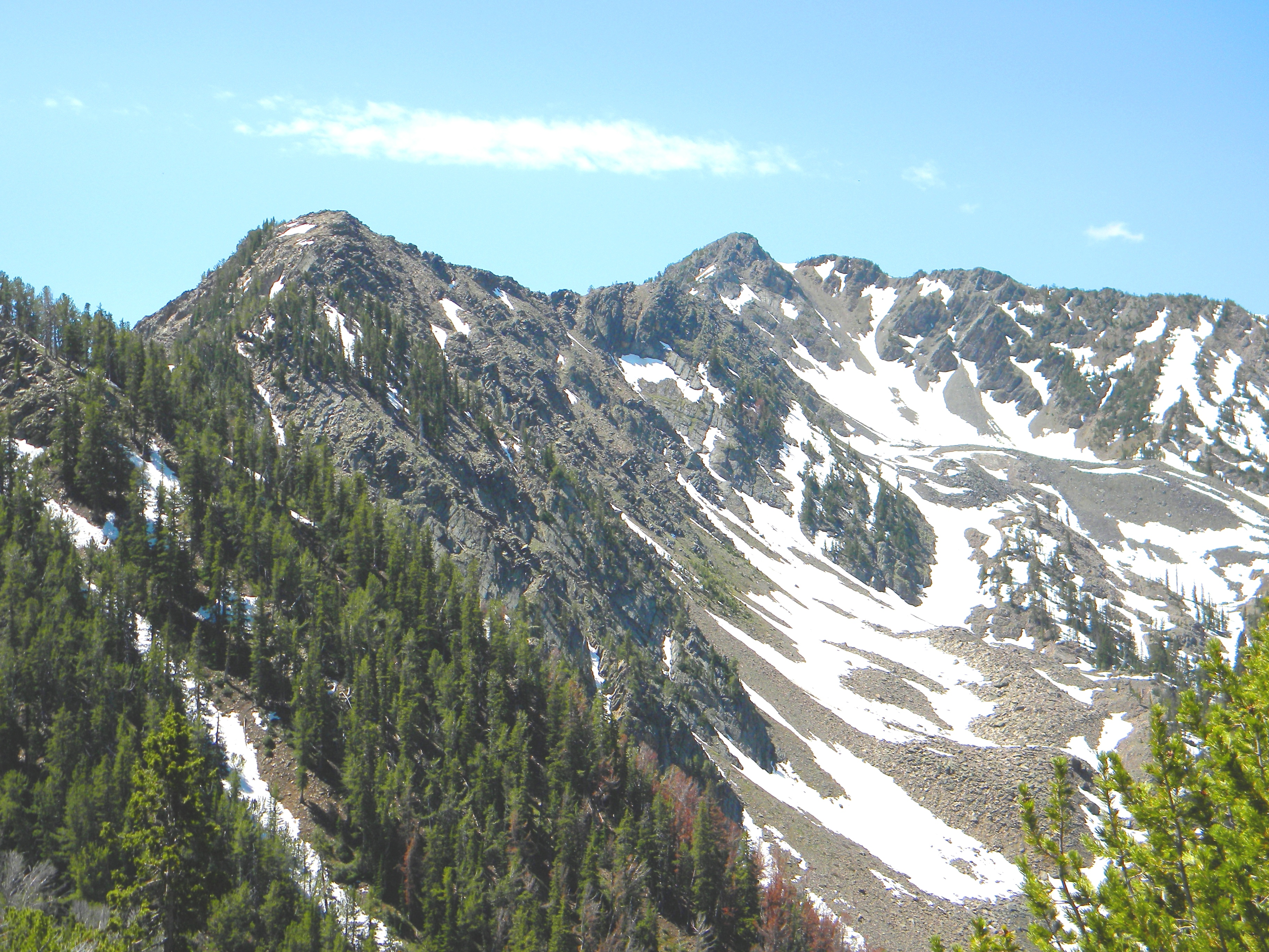 This is Black Mountain and its north ridge, which are part of the Contintal Divide on the Idaho/Montana border. This view is about five miles up the Mile Creek trail. June 2009. Mike Hays Photo