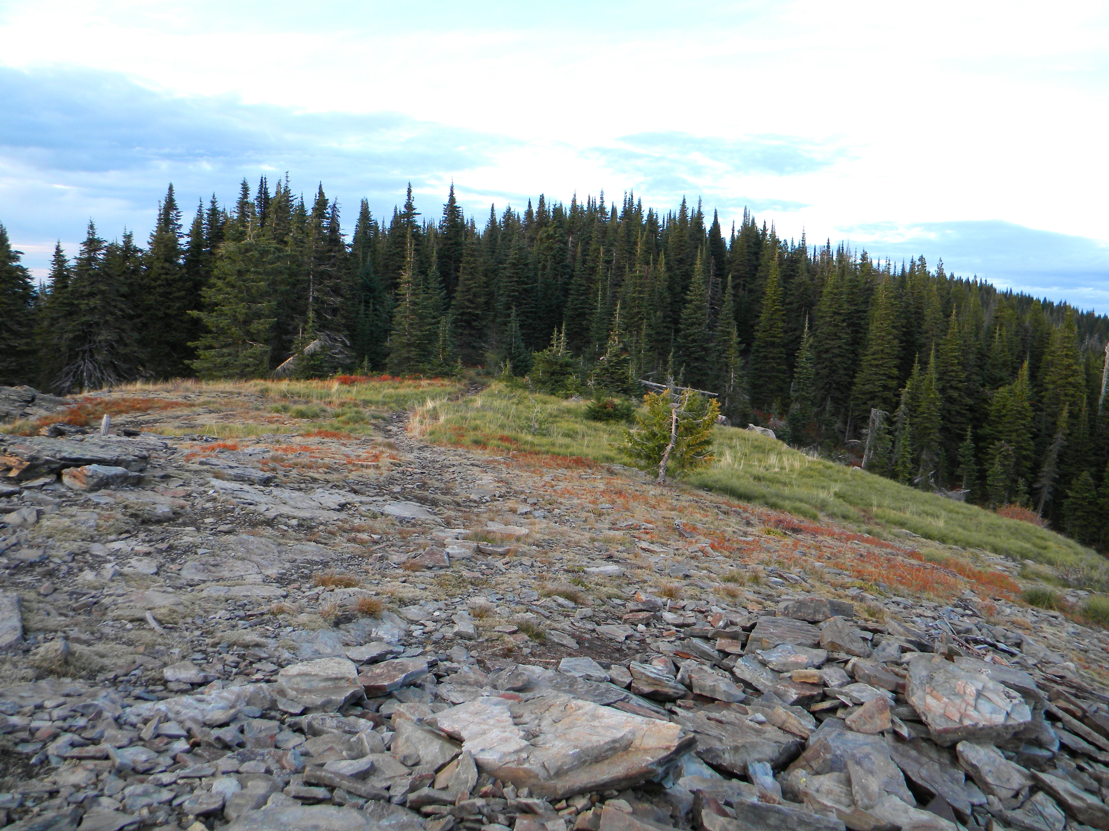 The summit area. Mike Hays Photo