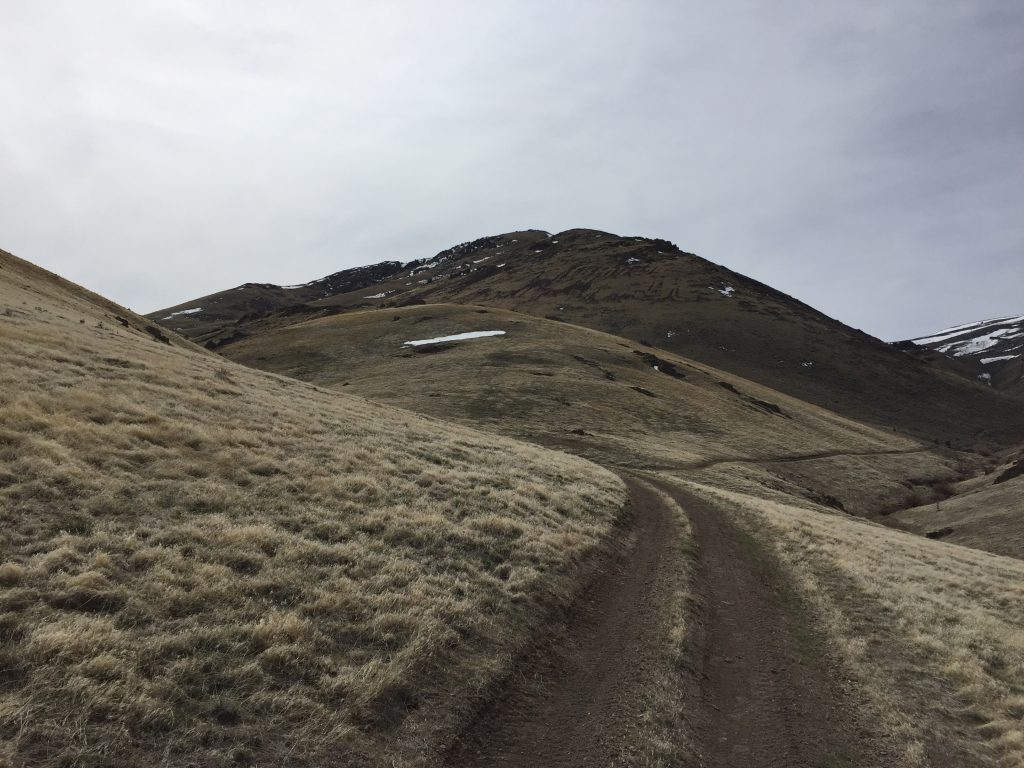 Peak 5591 from the Moores Creek Road.