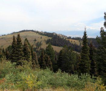 Squirrel Mountain from Peak 7906