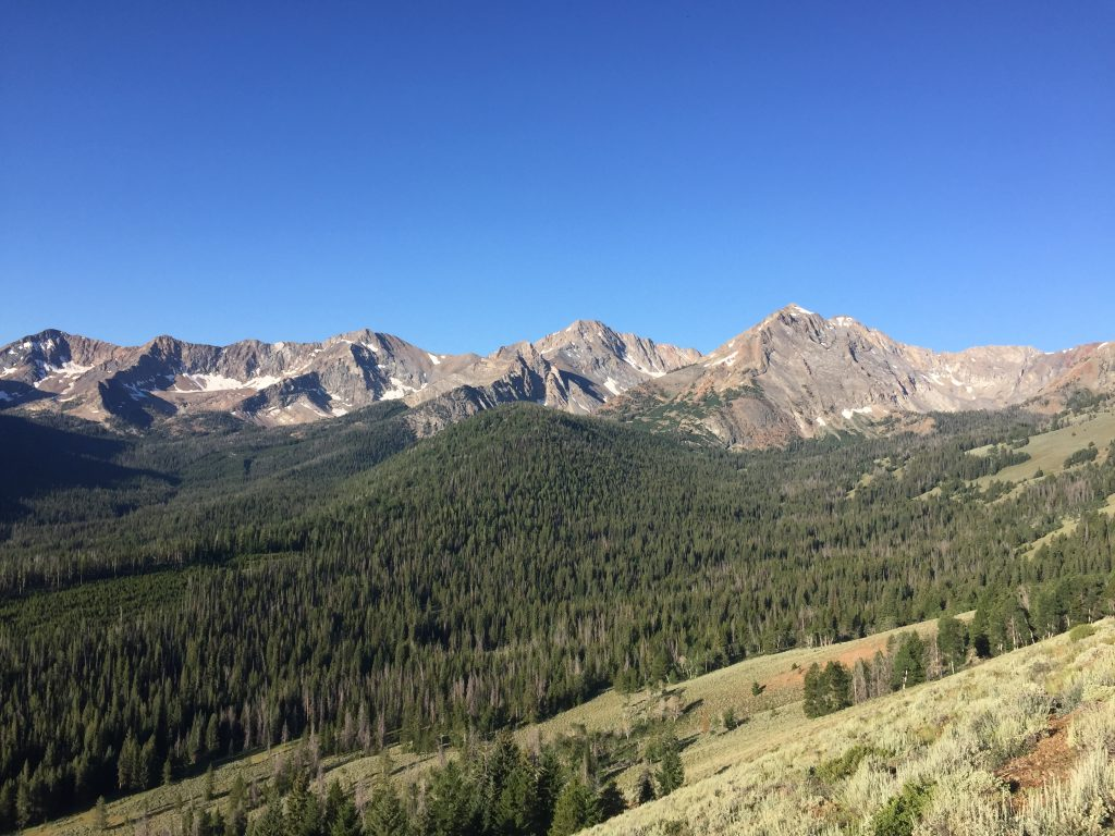 As you climb up the east ridge you will be rewarded with views of many of the range's 11ers.