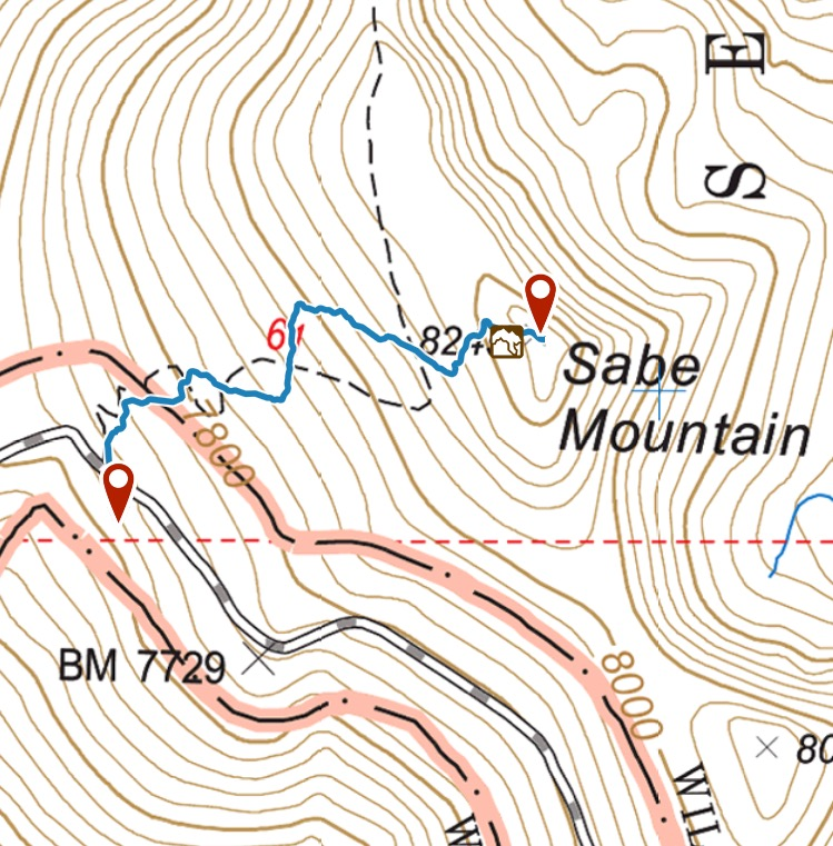 My GPS track. I followed the trail until right below the summit.