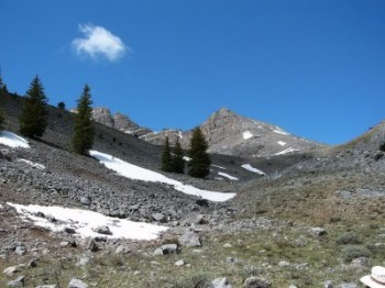 As you reach treeline, you will see the north ridge of Ramshorn Peak. Jaggle's summit is off to the right.