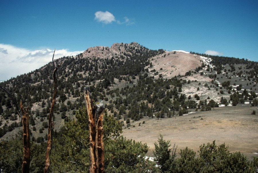 Lone Pine Peak Summit from the south.