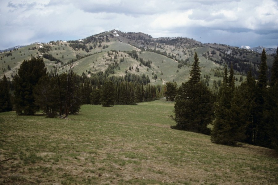 Mandolin Peak, viewed hear from the south, is representative of Pioneer terrain south of the Big Wood River.