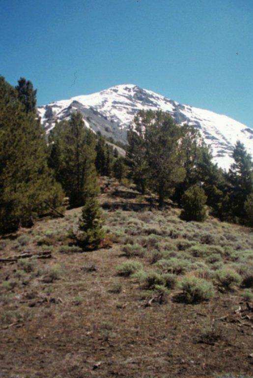 McGowan Peak.