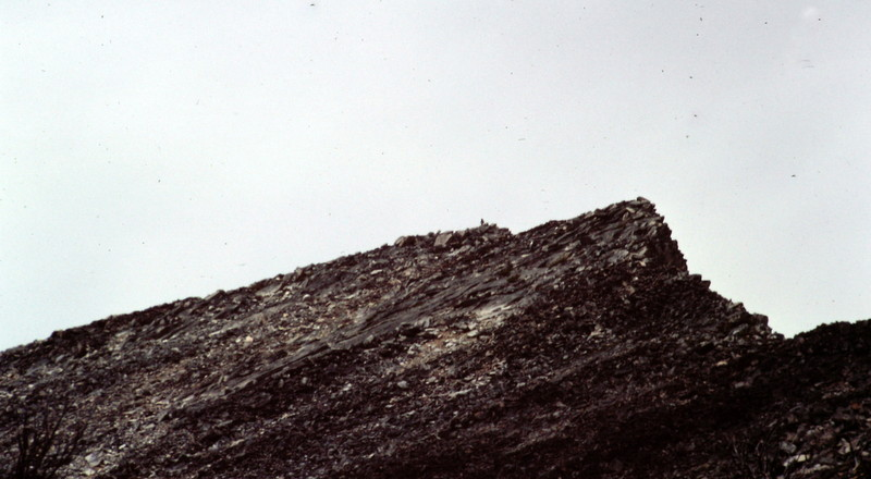 Approaching the summit of Mount McGuire.