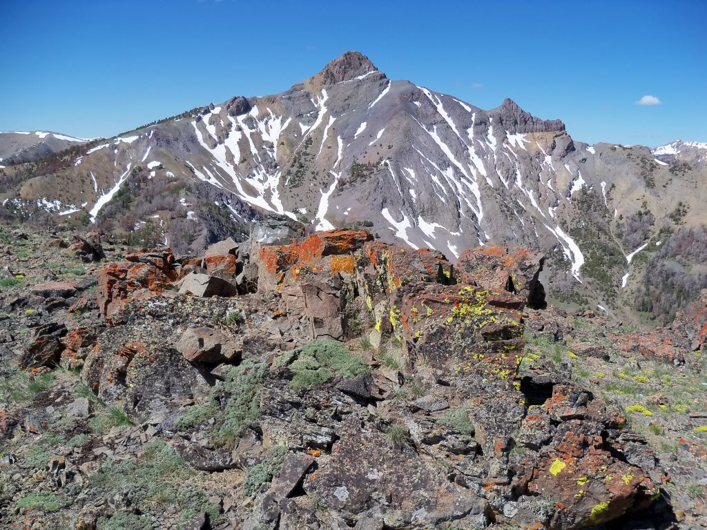 View SW to parent Central Idaho Nipple/ Mystery Peak 10785'. Rick Baugher Photo