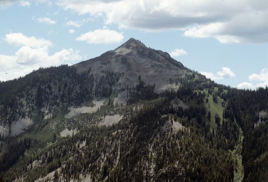 Newman Peak from Two Top Mountain.