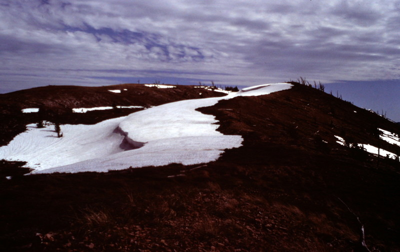 Snowdrift Peak's summit, June 1983.