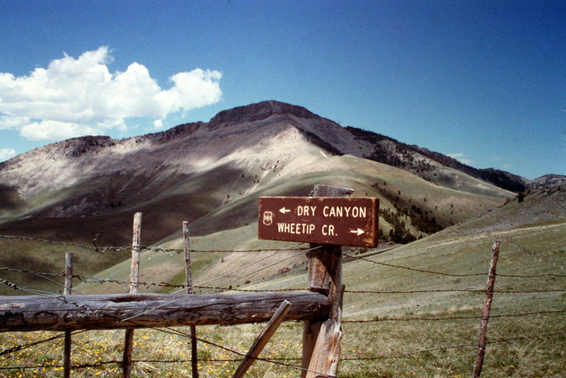 The hike starts on a rolling section of the Continental Divide.