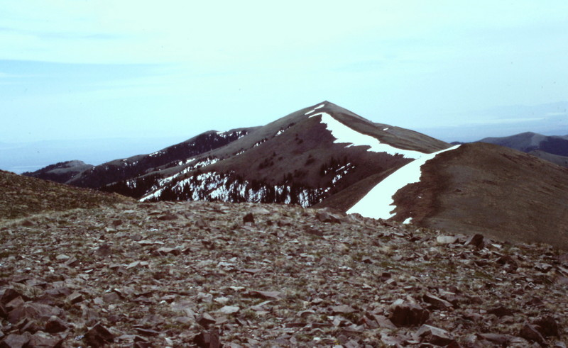 Black Pine Peak from Black Peak.