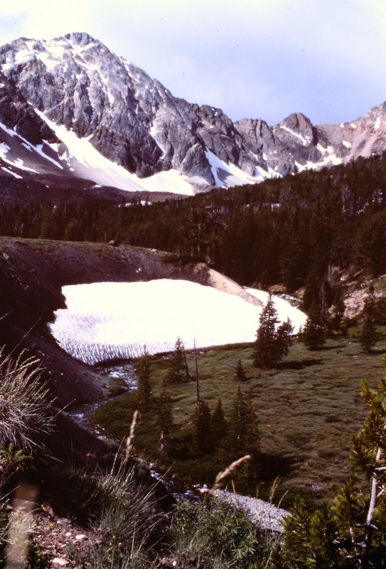 The east side approach to the peak is scenic and more alpine in nature than most Lost River Range drainages.