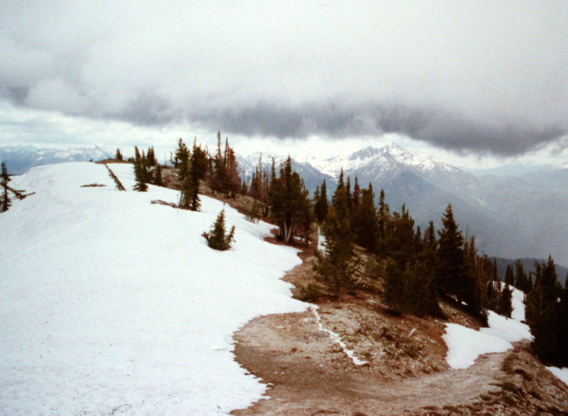 The summit is just ahead in this June of 1997 photo. You can see the 4WD road in the lower left hand cornern. This road is more trail like than road like and is a great way to access the summit.
