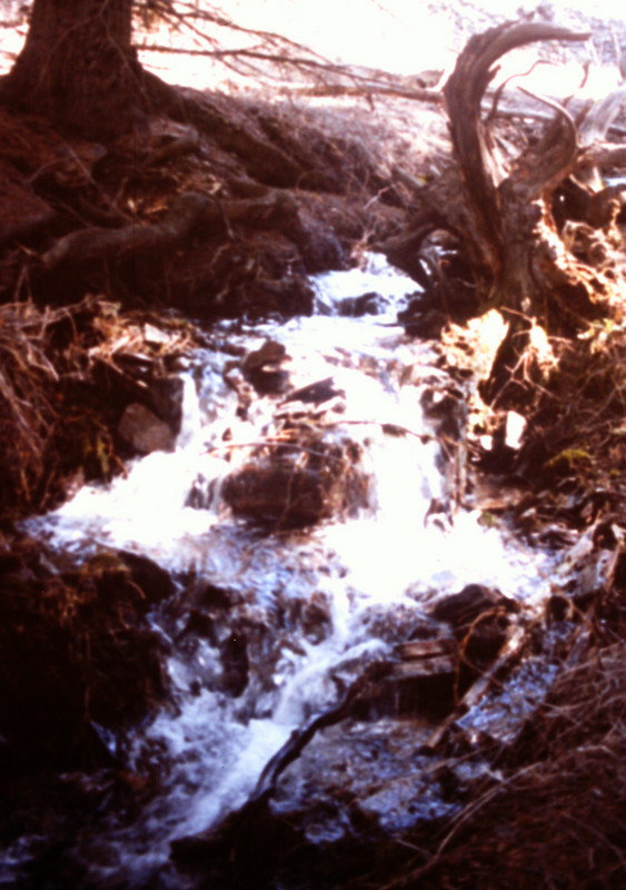 The approach up McGowan Creek will only encounter serious stream flows during the spring runoff.