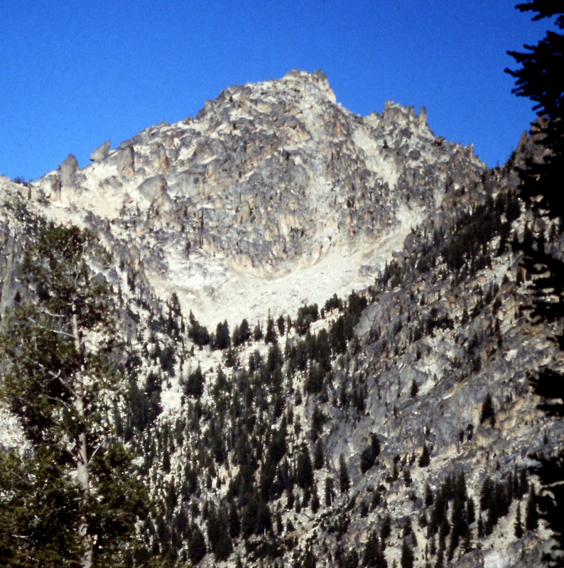 Braxon Peak. The east ridge is on the right sky line. The approach climbs up the drainage in the center of the photo. From the basin at the top of the tree, the route goes to your right, and climbs to the east ridge. Aim for a point west of the lowest point to avoid to towers on the ridge.