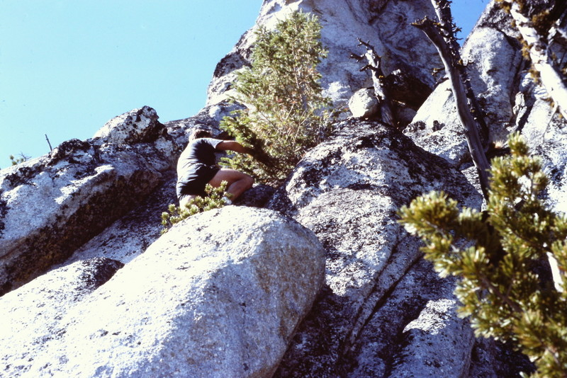 Needles route