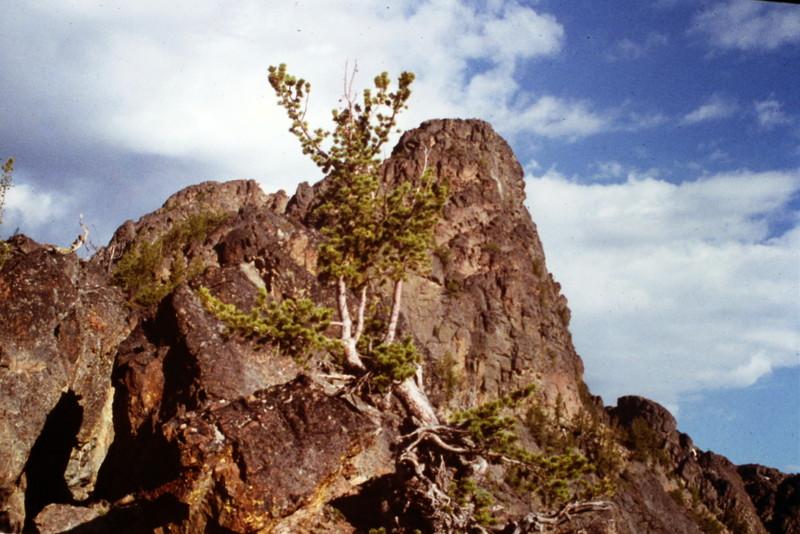 The Goblin's summit block.