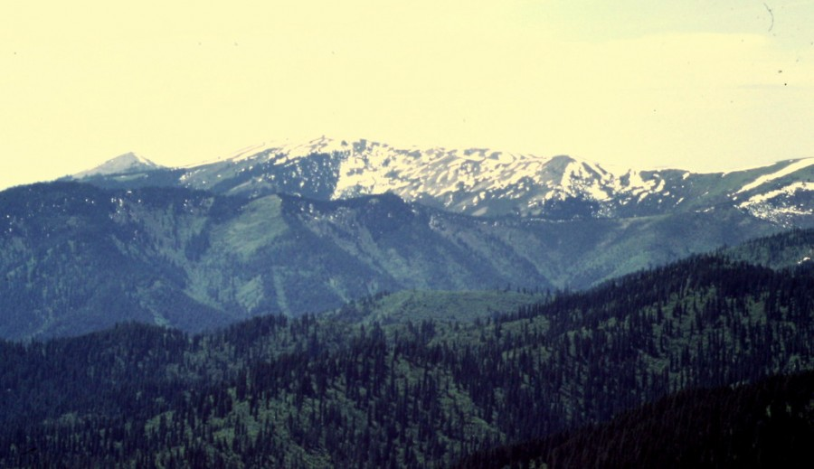 Reeds Baldy from Lemonade Peak.