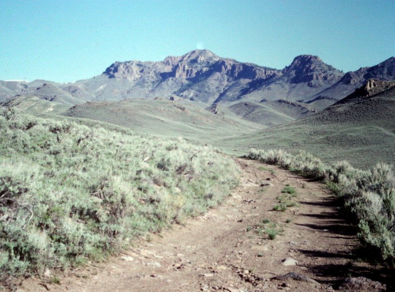 The approach to Sheep Mountain leave Antelope Creek and follows the Waddoups Creek road toward the mountain.
