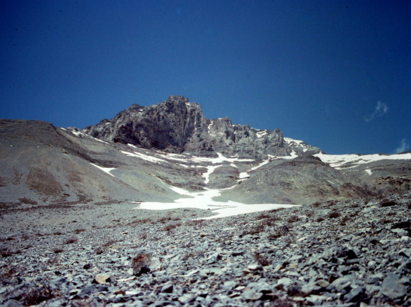 Looking up the Long Gully which climbs out of Lower Cedar Creek toward the peak's east face and east ridge (on the left).