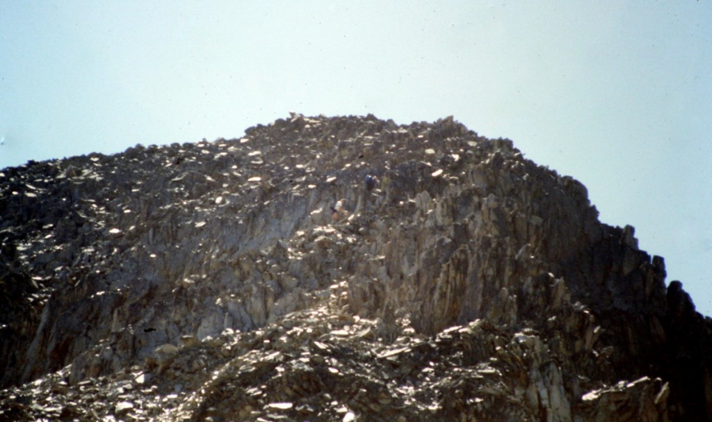 The summit of White Mountain is a pile rubble.