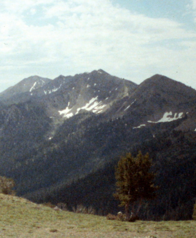Rock Roll Peak from the North Fork Trail Creek.