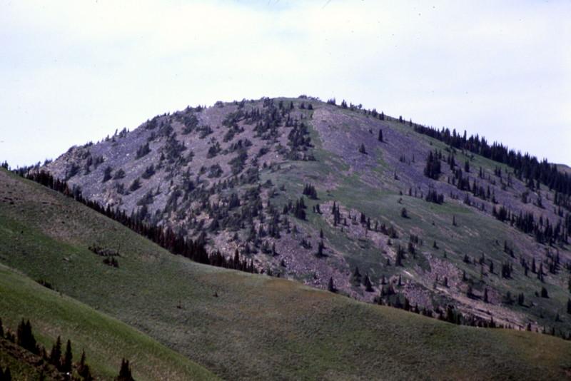 Bonneville Peak.